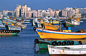 Bay and harbour. Alexandria. Egypt