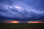 Cloud, Clouds, Color, Colour, Dark, Darkness, Exterior, Horizontal, Landscape, Landscapes, Meteorology, Natural phenomena, Natural phenomenon, Nature, Outdoor, Outdoors, Outside, Scenic, Scenics, Skies, Sky, Storm, Storms, Stormy, Threat, Threats, Weathe