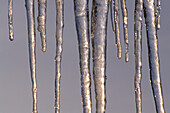 Close up, Close-up, Closeup, Cold, Coldness, Color, Colour, Detail, Details, Exterior, Horizontal, Ice, Natural phenomena, Natural phenomenon, Nature, Outdoor, Outdoors, Outside, Scenic, Scenics, Winter, Wintertime, CatV5, 11070, agefotostock