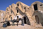 Ghorfas (granaries). Medenine. Tunisia