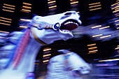 Amusement park, Amusement parks, Blurred, Carousel, Carousels, Color, Colour, Concept, Concepts, Craziness, Crazy, Detail, Details, Dream, Dreams, Dreamy, Fair, Fairground, Fairs, Fantasy, Fast, Funfair, Funfairs, Horizontal, Horse, Horses, Mad, Madness,