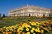 Midi Aisle. Versailles Palace, France