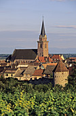 Fortified village. Bergheim. Haut Rhin. Alsace. France.