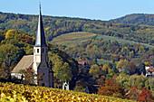 Andlau. Alsatian Wine Road. France