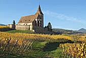 Hunawihr. Alsatian Wine Road. France