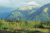Matanuska Valley. Alaska. USA