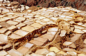 Salt pans of Maras, dating from Inca times. Urubamba valley. Peru