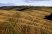 Crete Farms and Country. Siena County. Tuscany. Italy.