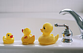 Ducks on bath
