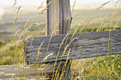 rustic fence post