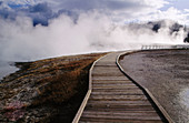 Boardwalk and geysers, Yellowstone National Park. Wyoming, USA