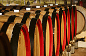 Fantinel wine barrels. Friuli-Venezia Giulia, Italy