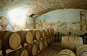 Wine cellars. Villanova di Farra, Farra d Isonzo. Collio region. Friuli-Venezia Giulia, Italy
