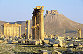 Columns, funerary temple and arabic castle, ruins of the old Greco-roman city of Palmira. Syria
