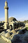 Khosofiyé mosque. Aleppo. Syria