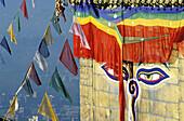 Detail of Swayambhunath Stupa. Kathmandu. Nepal