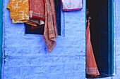 Woman in sari. The blue city. Jodhpur. Rajasthan. India.