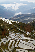 China, Yunnan, Yuanyang, terraced paddy fields.