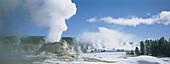 Castle geyser. Yellowstone National Park. USA.