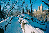 Central Park. New York City. USA