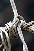 Close up, Close-up, Closeup, Color, Colour, Concept, Concepts, Detail, Details, Indoor, Indoors, Inside, Interior, Knot, Knots, Many, Object, Objects, Resistance, Rope, Ropes, Safety, Security, Thing, Things, Tied, Vertical, F58-245378, agefotostock