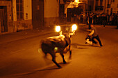 Action, Adult, Adults, Animal, Animal abuse, Animals, Blurred, Bull, Bulls, Celebrate, Celebrating, Celebration, Celebrations, Color, Colour, Cruel, Cruelty, Europe, Exterior, Festival, Festivals, Fire, Flame, Flames, Folk, Folklore, Holiday, Holidays, H