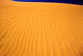 Scenic desert sand dune.