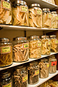 Dried shark fins and sea cucumbers for sale in traditional chinese medicine store, Hong Kong, China