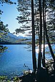 Shadow Lake. Ansel Adams Wilderness. Sierra Nevada Mountains. California. USA.