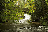 Whatcom Falls framed by stone bridge, autumn (Acer circinatum; A. macrophyllum). Bellingham, Whatcom Falls Park, WA.