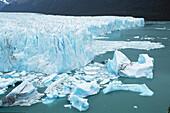 Los Glaciares NP. Patagonia. Argentina