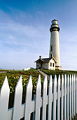 Pigeon Point Lighthouse in California Coast. USA