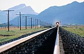 Train on tracks. Alberta. Canada