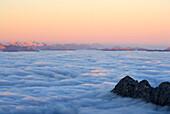 Mountain Scheffauer above fog bank, Karwendel and Wetterstein range in background, Ellmauer Halt, Kaiser range, Tyrol, Austria