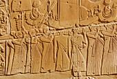 relief in temple of Karnak, Egypt, Africa
