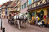 Horse drawn carriage in Little Venice, Petite Venise, Colmar, Alsace, France