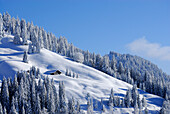 Snow covered alp lodge, Balderschwang Valley, Allgaeu Alps, Bavaria, Germany