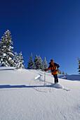 Skier skiing downhill, Feuerstaetter Kopf, Allgaeu Alps, Vorarlberg, Austria