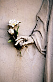 Color, Colour, Concept, Concepts, Contrast, Contrasts, Death, Detail, Details, Ephemeral, Exterior, Flower, Flowers, Gray, Grey, Hand, Hands, Life, Outdoor, Outdoors, Outside, Rose, Roses, Sculpture, Statue, Statues, Time, Tomb, Tombs, Vertical, White Ro