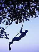 Amusement, Color, Colour, Concept, Concepts, Dusk, Exterior, Fun, Hang, Hanging, Holiday, Holidays, Human, Irreal, Leisure, Odd, One, One person, Out of place, Outdoor, Outdoors, Outside, People, Person, Persons, Recreation, Rope, Ropes, Silhouette, Silh
