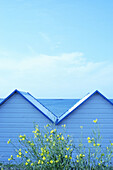 Bathing hut, Bathing huts, Beach, Beaches, Blue, Cabana, Cabanas, Calm, Calmness, Coast, Coastal, Color, Colour, Concept, Concepts, Contemporary, Daytime, Exterior, Flower, Flowers, Holiday, Holidays, Leisure, Outdoor, Outdoors, Outside, Pair, Peaceful,