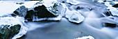 Ice covered stones in river Hoegne. Ardennes. Belgium