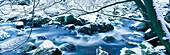 River Hoegne in winter. Ardennes. Belgium
