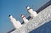 Außen, Drei, Familie, Familien, Farbe, Flüchtig, Horizontal, Jahreszeit, Jahreszeiten, Kalt, Kälte, Kindheit, Konzept, Konzepte, Leblos, Leblosigkeit, Lustig, Schnee, Schneemann, Schneemänner, Sonderbar, Stimmung, Symbol, Symbole, Tageszeit, Weiß, Wetter