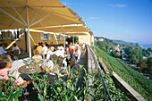 Guests sitting on terrace of a tavern, Meersburg, Lake Constance, Baden-Wurttemberg, Germany
