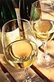 Wine glasses, Winery Herrenberg, Schoden, Saar, Mosel-Saar-Ruwer, Rhineland-Palatinate, Germany