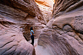 young woman in Coloured Canyon, mountain desert, Sinai, Egypt, North Africa