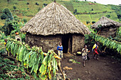African village Djombe, Virunga Mountains, Zaire, Africa