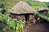 African village Djombe, Virunga Mountains, Zaire, Africa