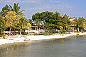 The Hotel Boquemar behind palm trees at the beach, Cabo Rojo, Puerto Rico, Carribean, America